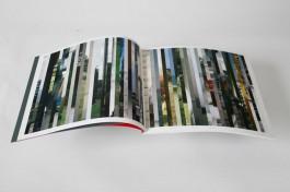 Rafaël Philippen, Boek 'insight/ogenblikken'