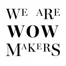 We Are Wow Makers: Design Logo & variabelen